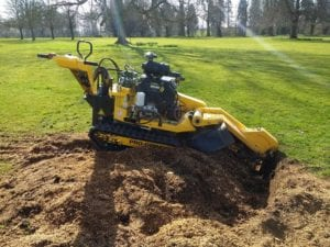 Stump Grinding & Tree Stump Removal 1