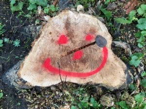 WHY WE GO FOR STUMP GRINDING EVERY TIME.