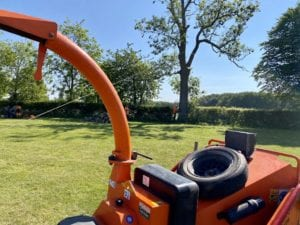 The benefits of professional tree removal services